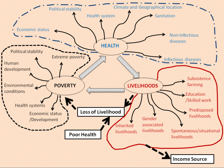 Mphande-Fig1.1-Poverty Health Livelihoods